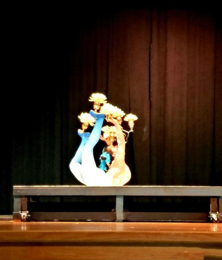 """""""亲情中华•美好安徽""""欢聚大纽约地区文艺演出精彩呈现 ..._图1-15"""