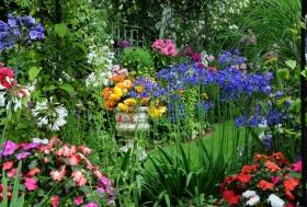 Lyn malcolms Garden 花园