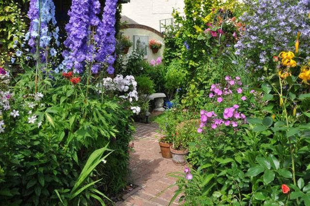 Lyn malcolms Garden 花园_图1-2