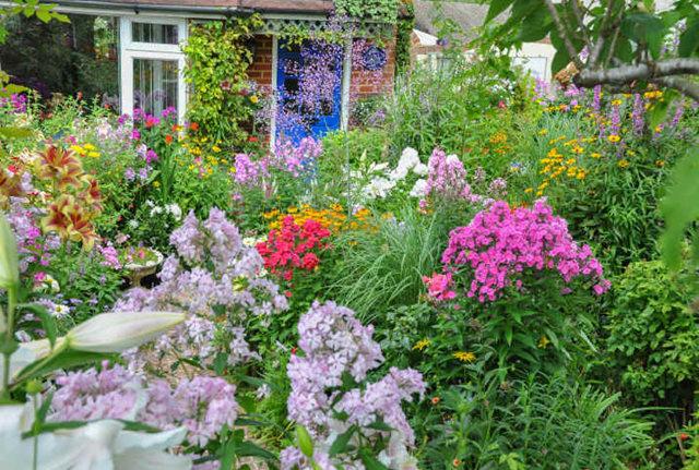 Lyn malcolms Garden 花园_图1-3