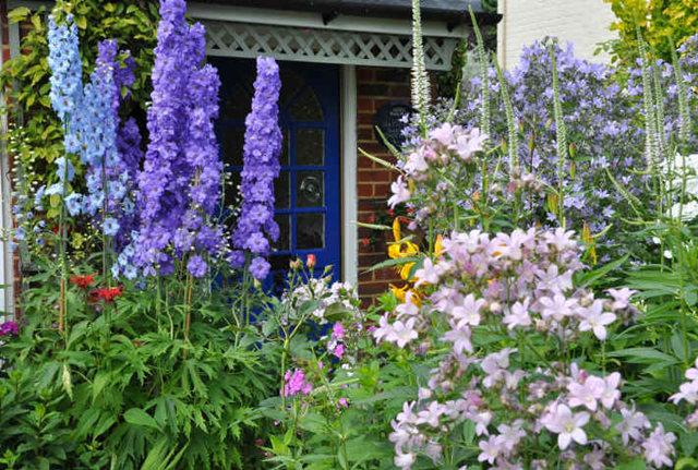 Lyn malcolms Garden 花园_图1-4