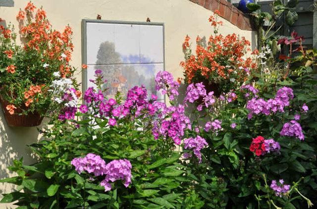 Lyn malcolms Garden 花园_图1-5