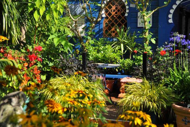 Lyn malcolms Garden 花园_图1-9