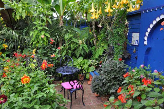 Lyn malcolms Garden 花园_图1-11