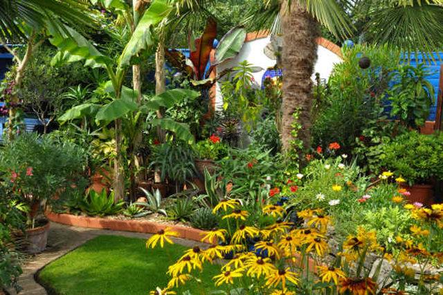 Lyn malcolms Garden 花园_图1-15