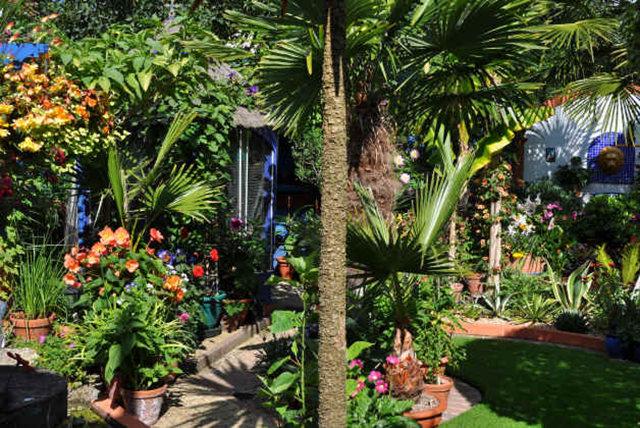 Lyn malcolms Garden 花园_图1-16