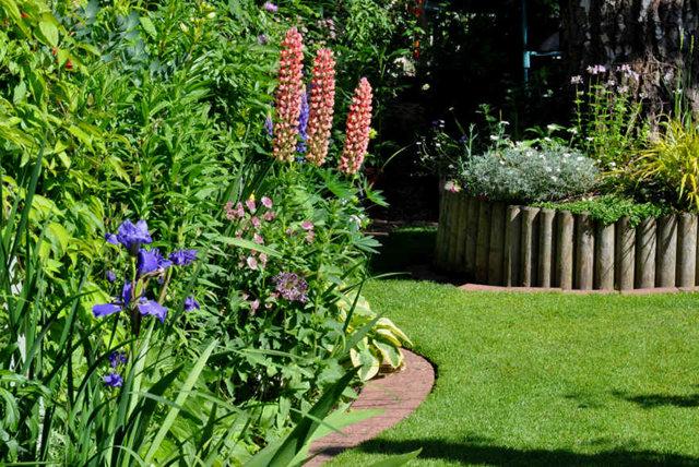 Lyn malcolms Garden 花园_图1-18