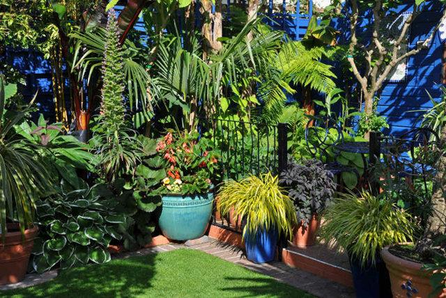 Lyn malcolms Garden 花园_图1-19