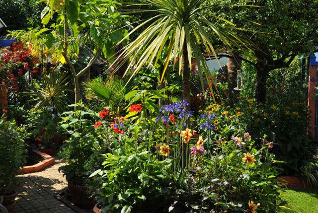 Lyn malcolms Garden 花园_图1-21