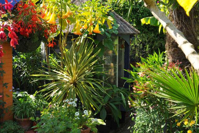 Lyn malcolms Garden 花园_图1-23