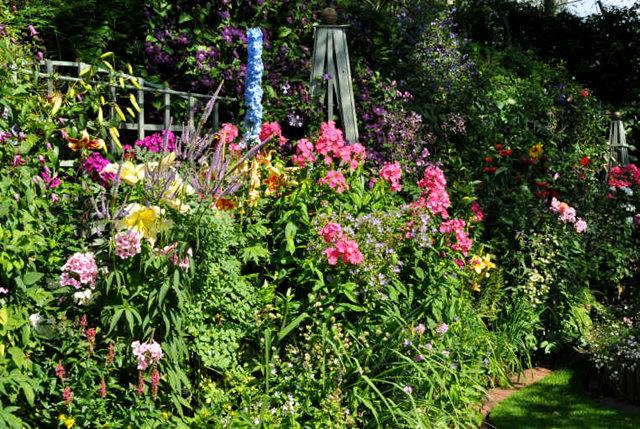 Lyn malcolms Garden 花园_图1-26