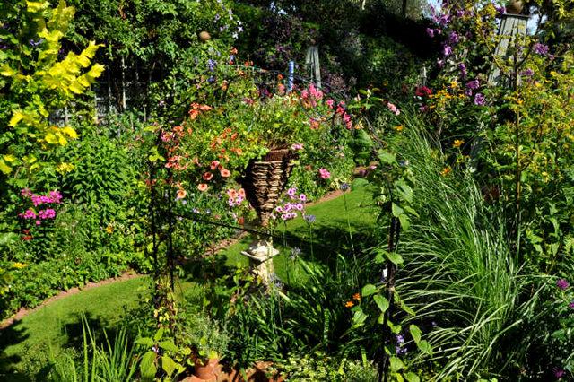 Lyn malcolms Garden 花园_图1-28