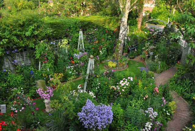 Lyn malcolms Garden 花园_图1-32