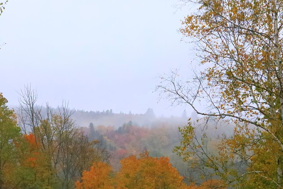 (原创摄影)Vermont之行 (1)_图1-14