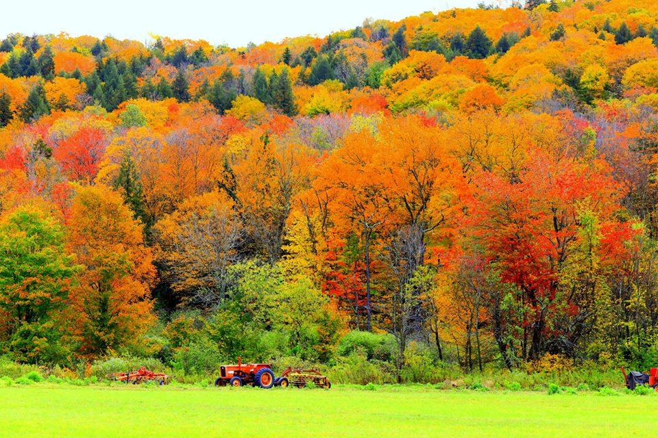 (原创摄影)Vermont之行 (1)_图1-4