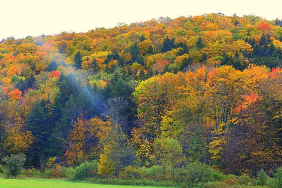 (原创摄影)Vermont之行 (1)_图1-7