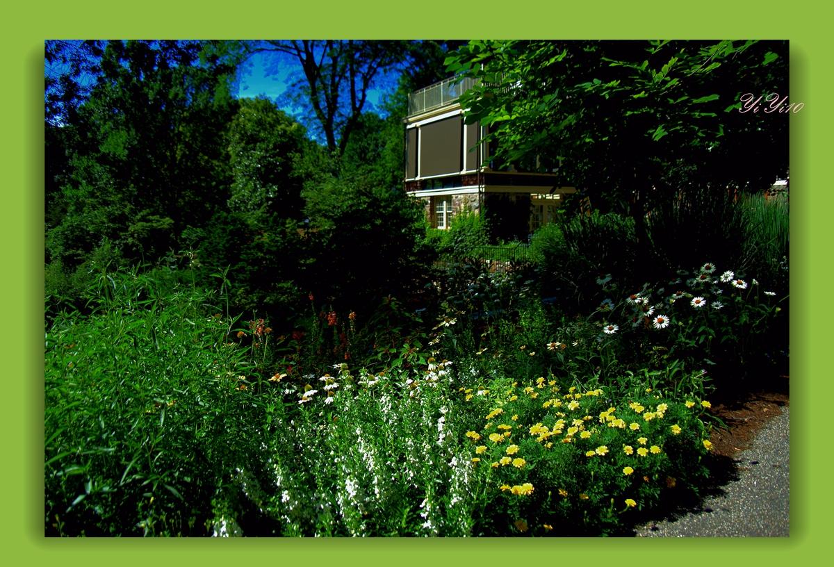 【原创】在绿色植物的围绕中(摄影)_图1-2