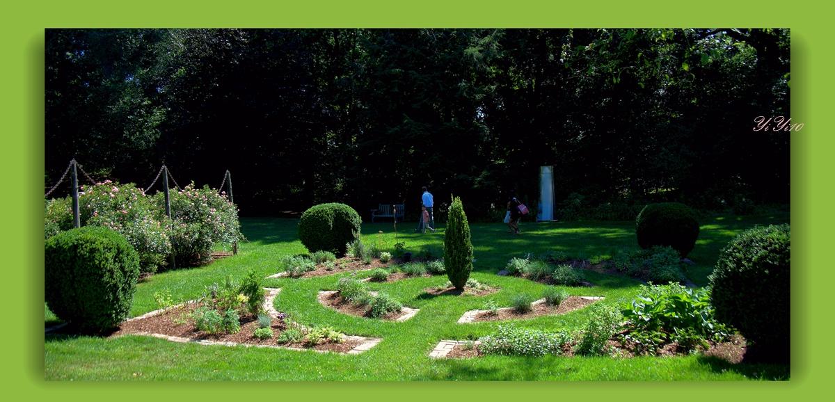 【原创】在绿色植物的围绕中(摄影)_图1-5