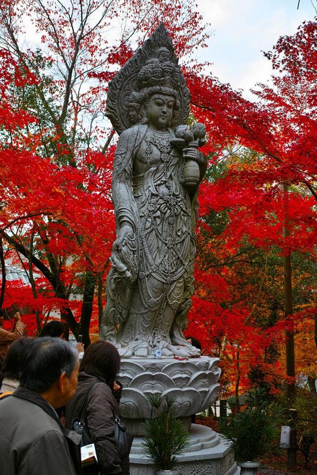 京都行之......南禅寺_图1-27
