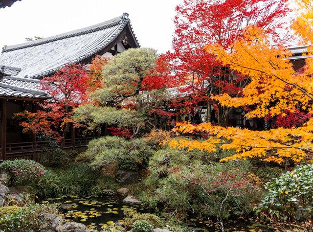 京都行之......南禅寺_图1-29