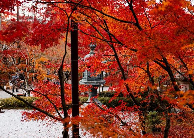 京都行之......南禅寺_图1-32