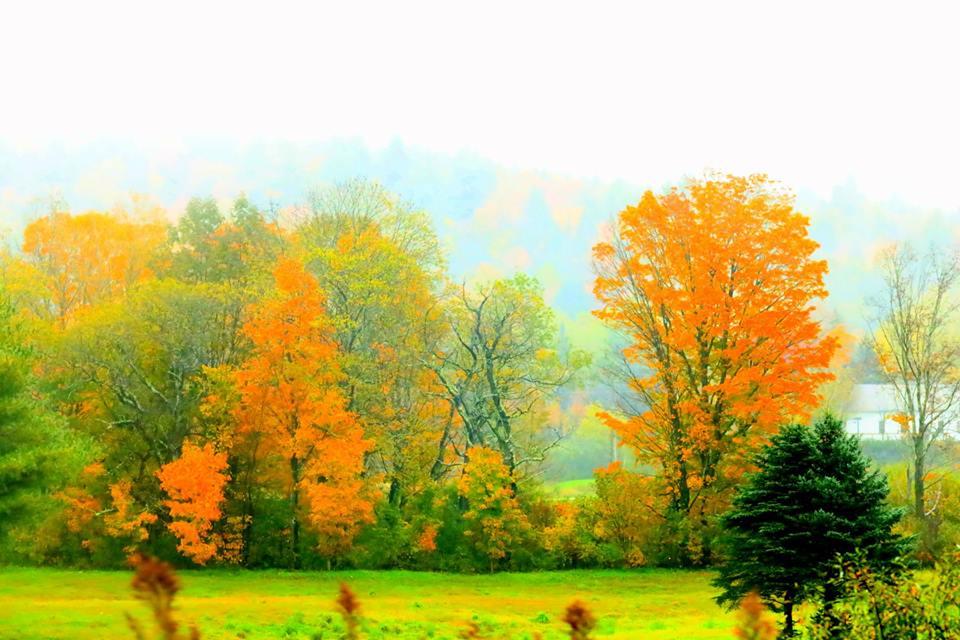 【原创摄影】Vermont West Dover 之行(2)_图1-12