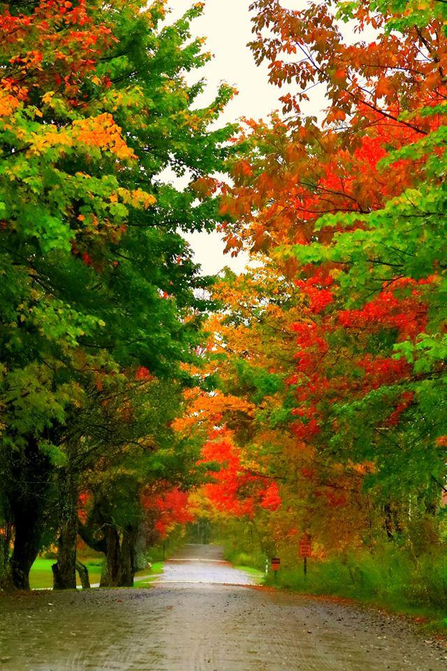 【原创摄影】Vermont West Dover 之行(2)_图1-14