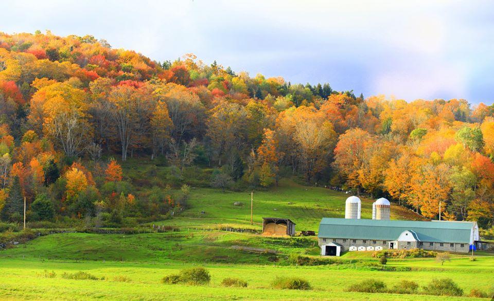 【原创摄影】Vermont West Dover 之行(2)_图1-11