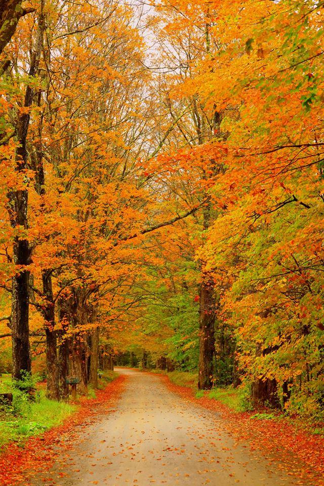 【原创摄影】Vermont West Dover 之行(2)_图1-3