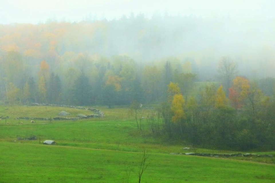 【原创摄影】Vermont West Dover 之行(2)_图1-6