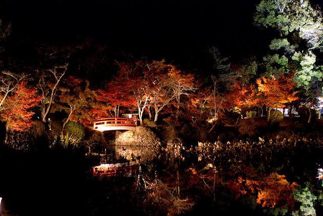 京都行之......大觉寺夜拍红叶_图1-8