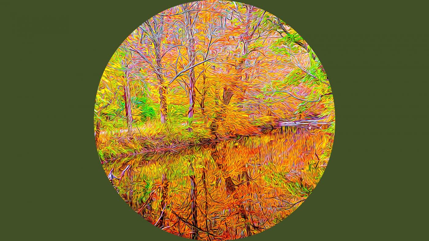 多彩的季节_图1-1