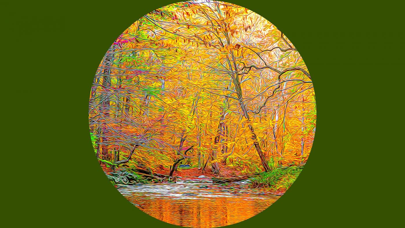多彩的季节_图1-6