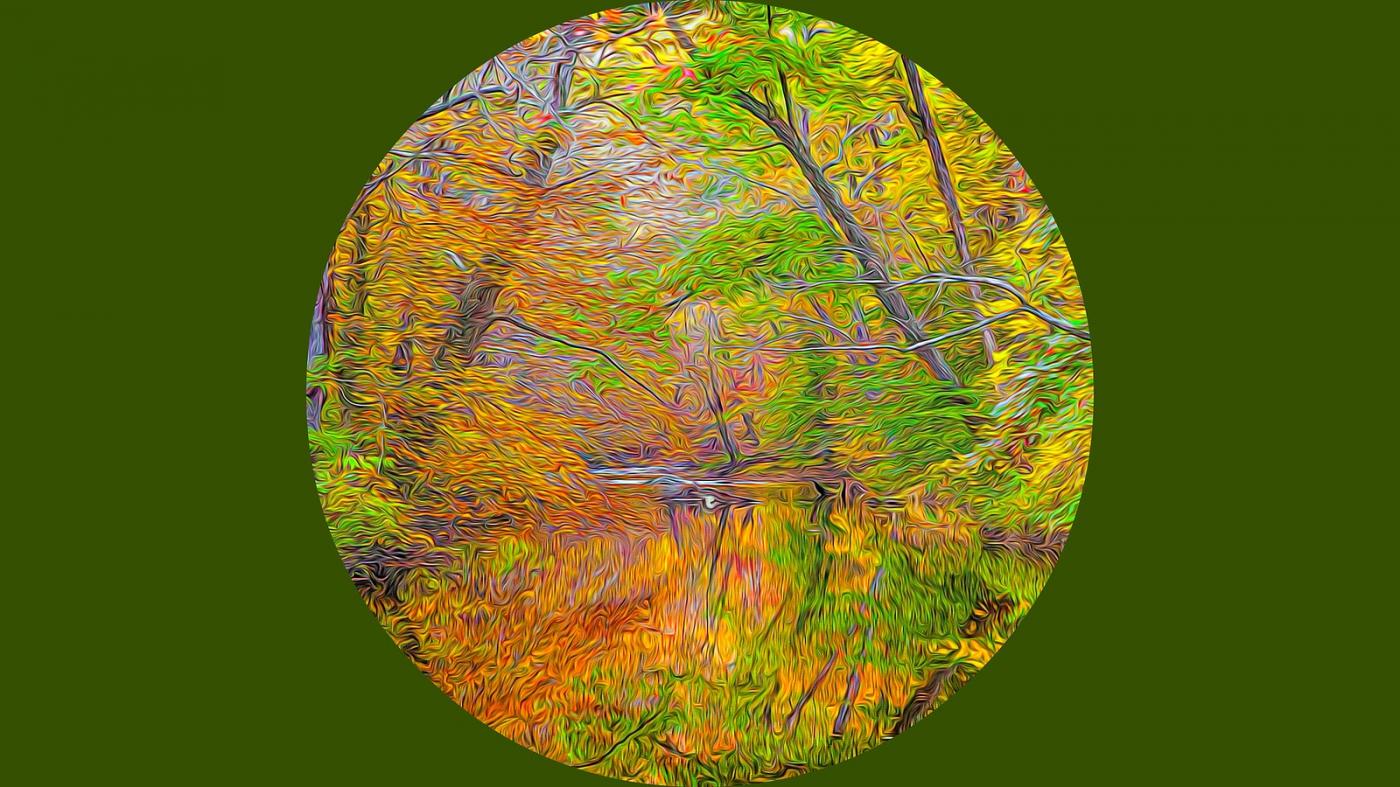 多彩的季节_图1-9