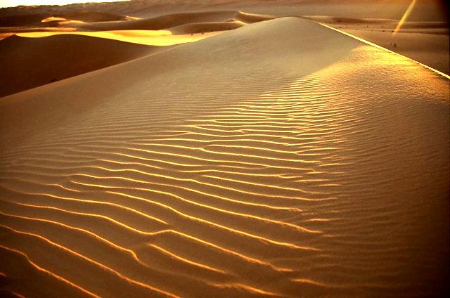 撒哈拉沙漠_图1-10