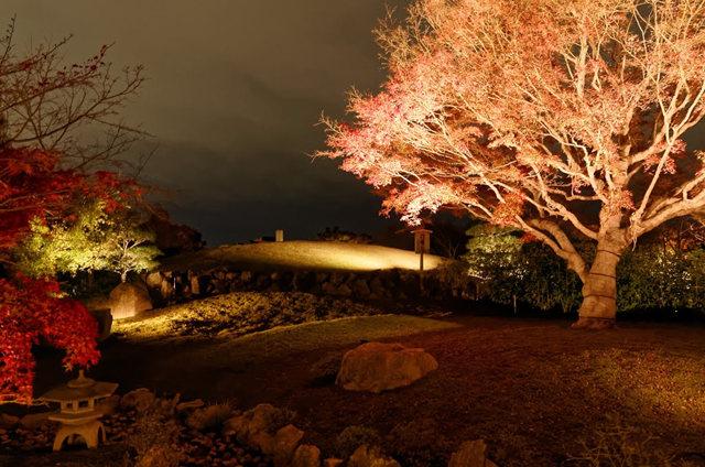 京都行之......青龙殿夜拍红叶_图1-1