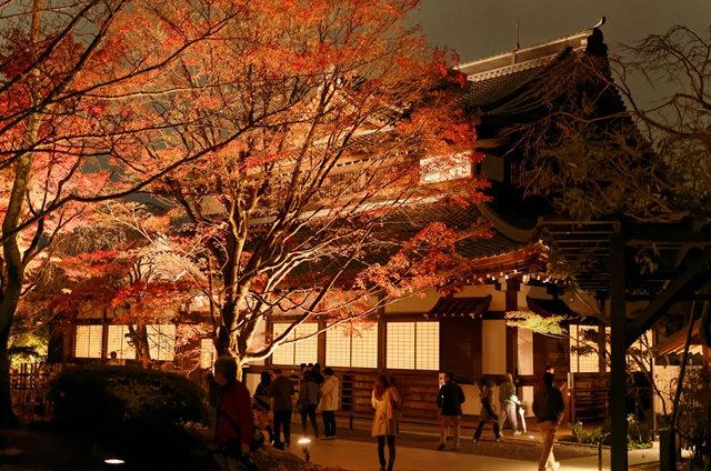 京都行之......青龙殿夜拍红叶_图1-4