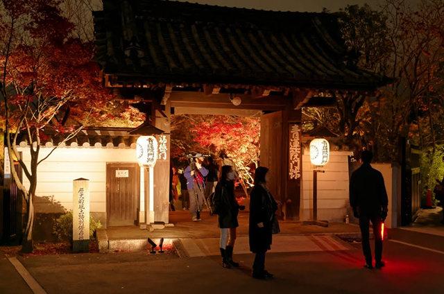 京都行之......青龙殿夜拍红叶_图1-5