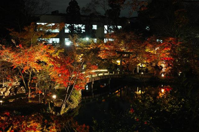 京都行之......青龙殿夜拍红叶_图1-12