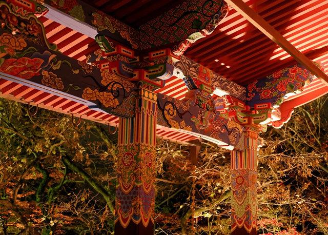 京都行之......青龙殿夜拍红叶_图1-13