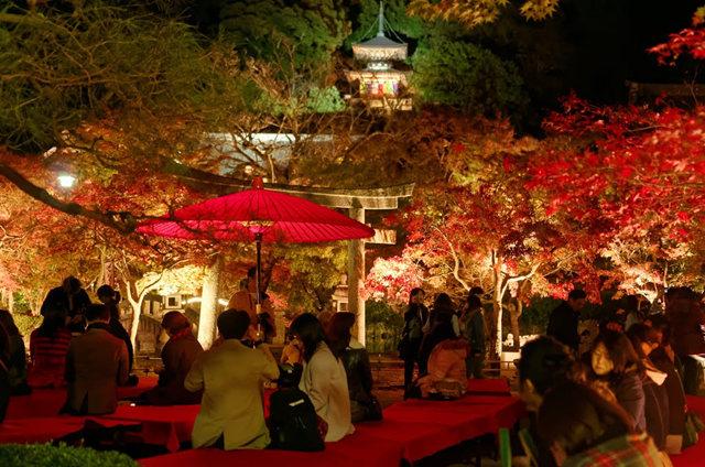 京都行之......青龙殿夜拍红叶_图1-16