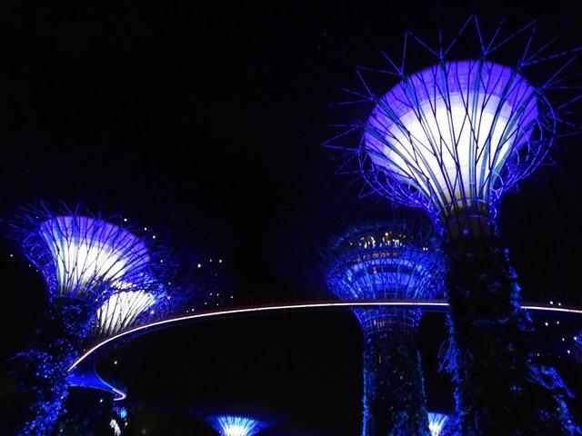 滨海花园夜拍_图1-17