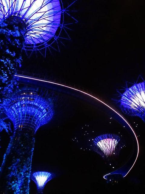 滨海花园夜拍_图1-18