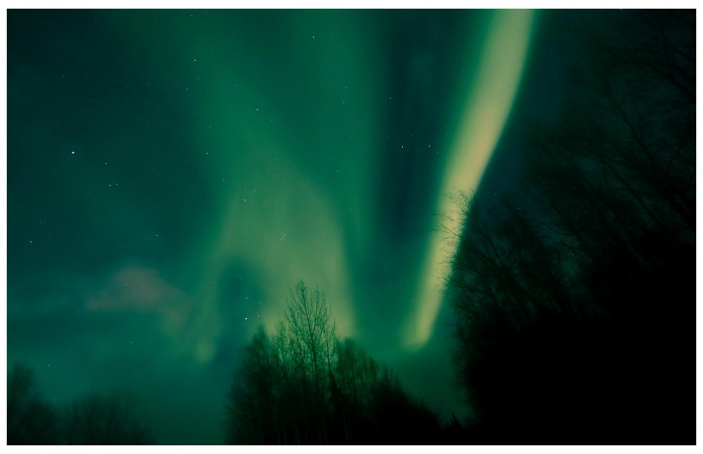 北极光―我的梦中情人_图1-1