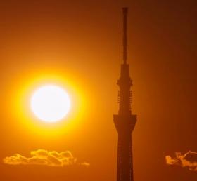日出天空树