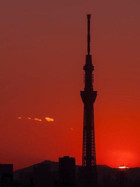 日出天空树_图1-4