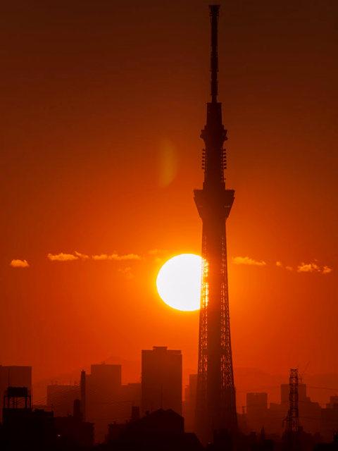 日出天空树_图1-7