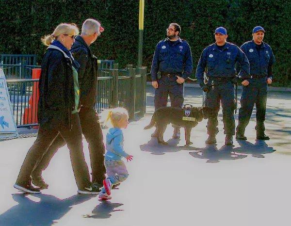 美国警察的温情时刻_图1-1