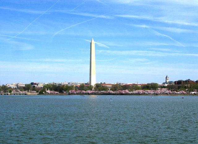 回顾去年华盛顿DC拍樱花_图1-2