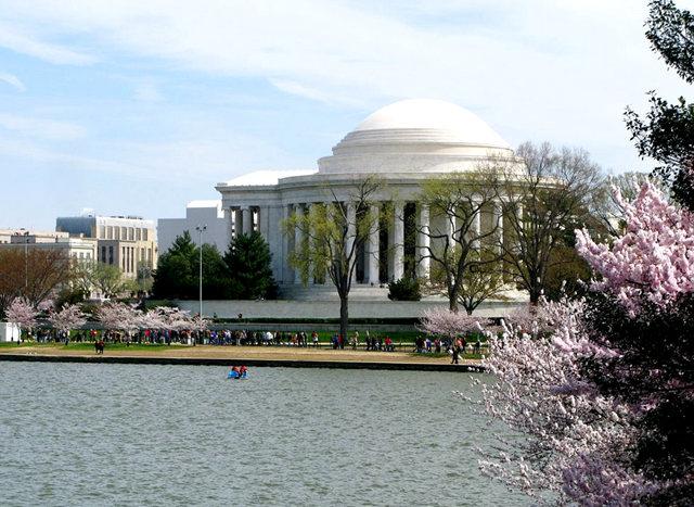 回顾去年华盛顿DC拍樱花_图1-3
